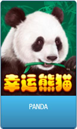 DeMacao Club Panda